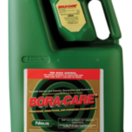 Bora-Care with Mold-Care