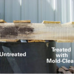 Mold-Clean comparison photo